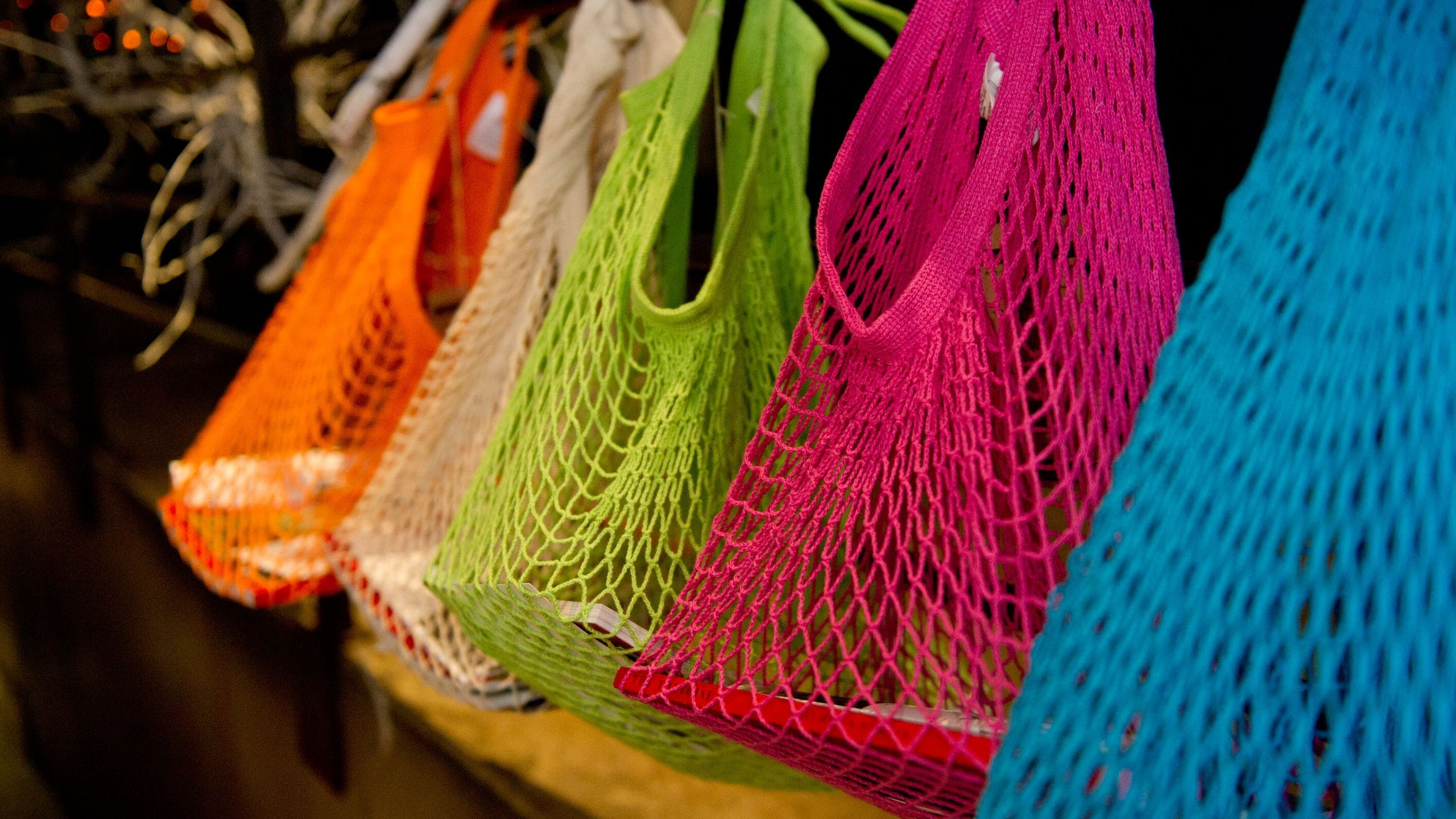 NetSuite ERP Case Study - EcoBags Products