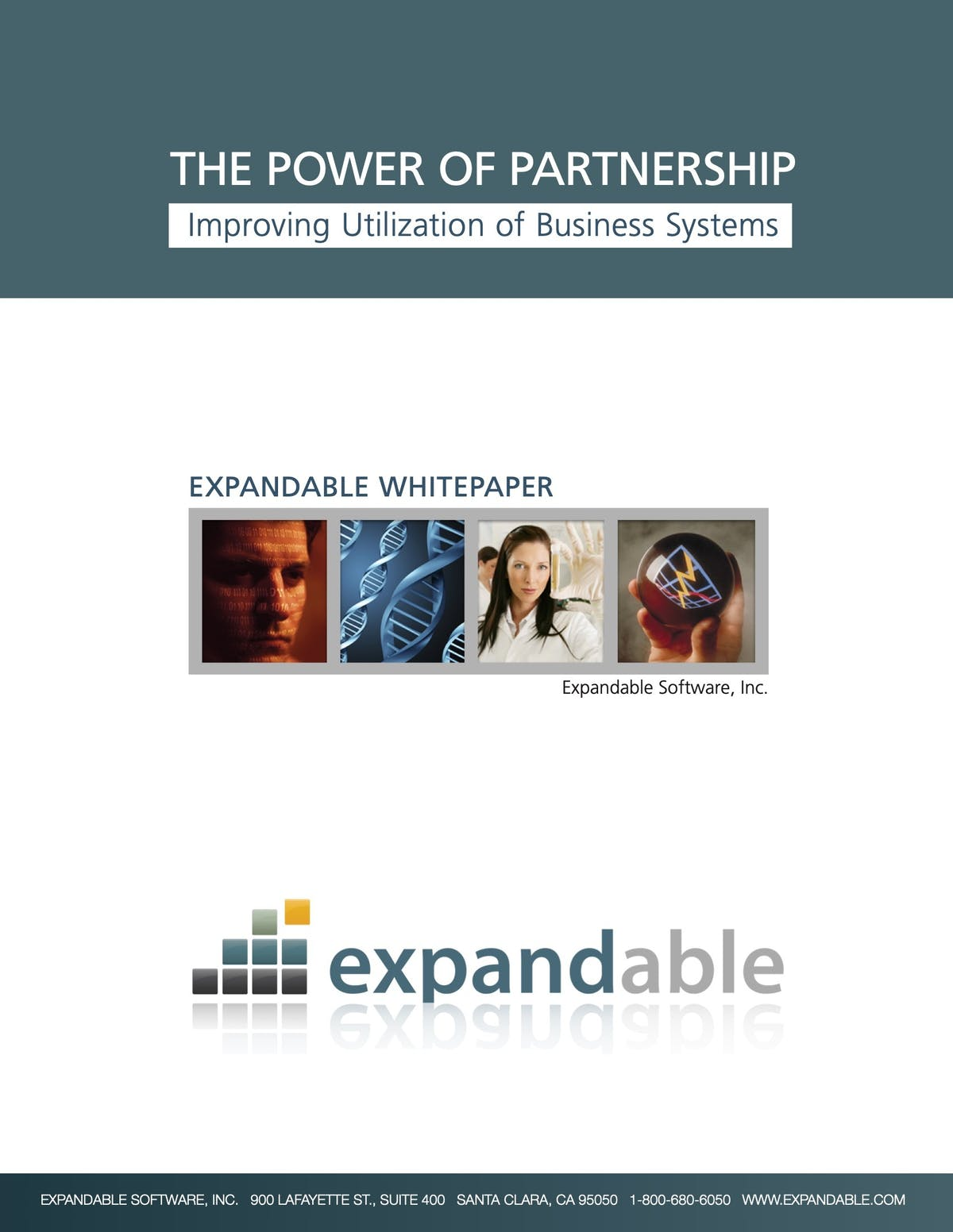 Expandable ERP White Paper - Improving Utilization of Business Systems