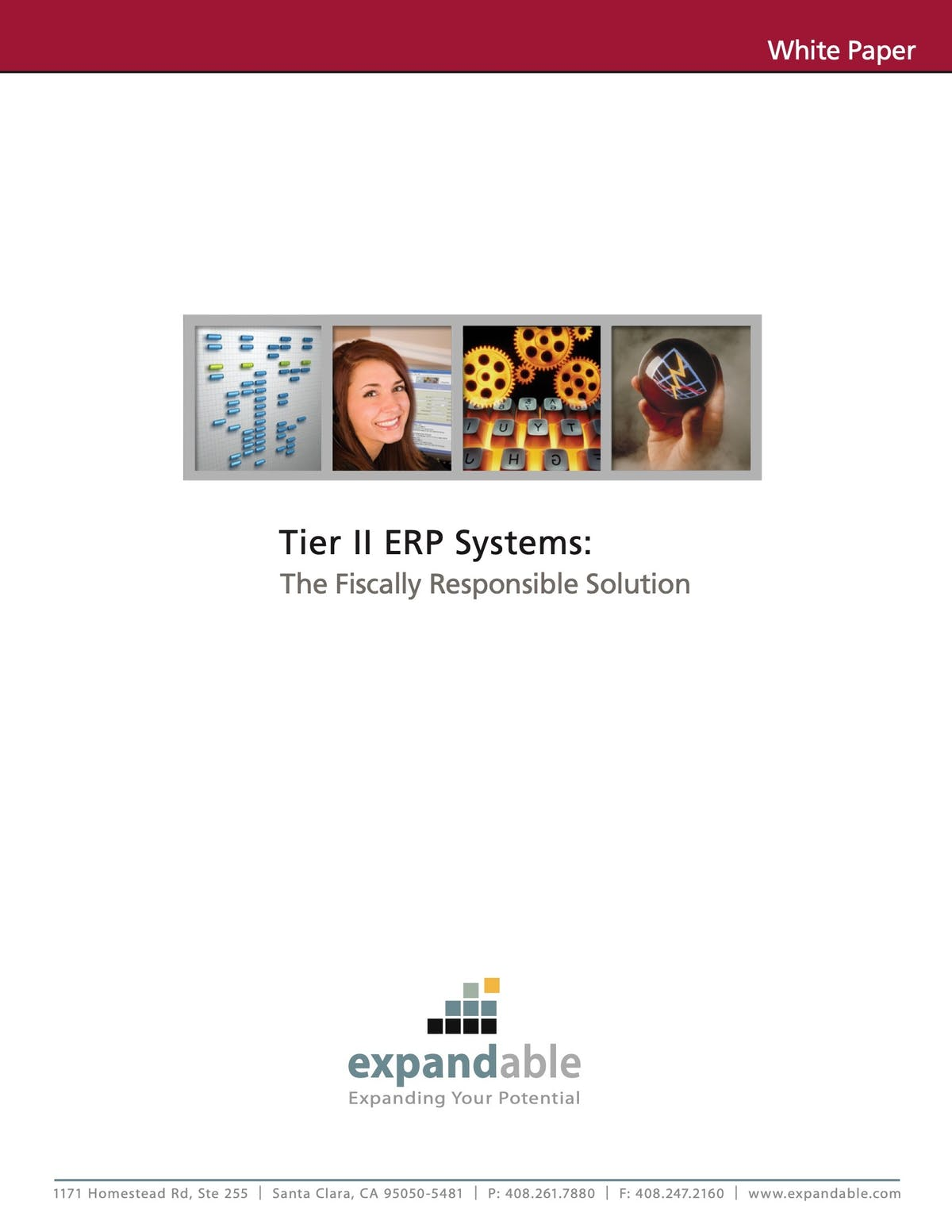 Expandable ERP White Paper - Tier II ERP Systems: The Fiscally Responsible Solution